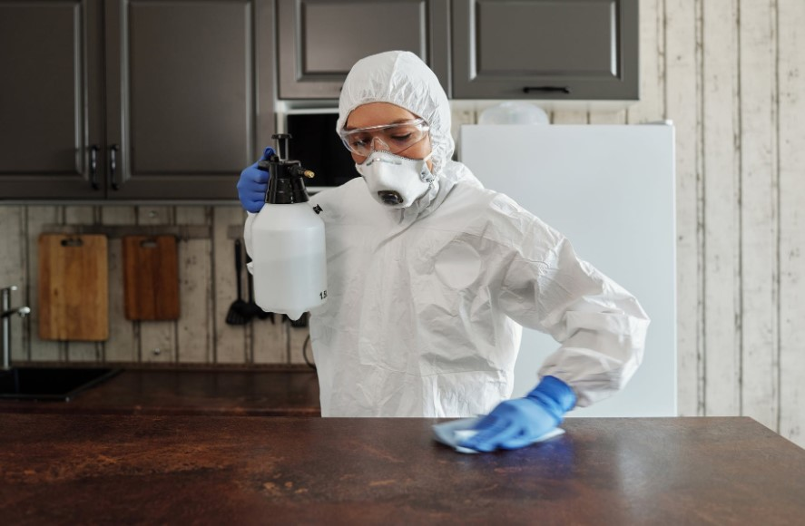 Best Reasons to Hire a Cleaning Professionals