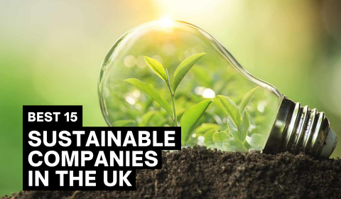 15 Sustainable Companies Making A Difference In The UK